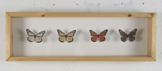 Jessica Rubenacker, The Monarch Butterfly, 2005. 30 in x 10 in, mixed media