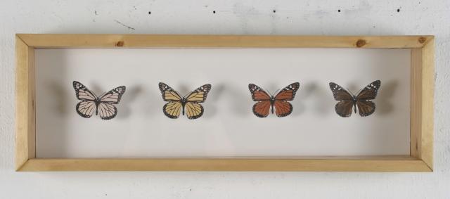 Jessica Rubenacker, The Monarch Butterfly, 2005. 30 in x 10 in, mixed media